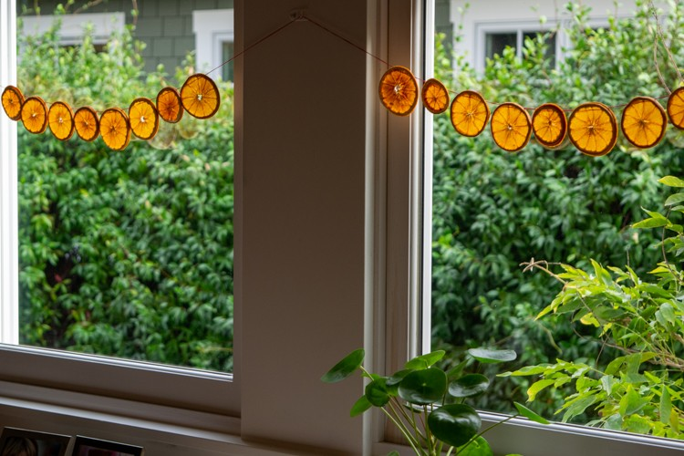 Orange slice garland hung in front of windows.