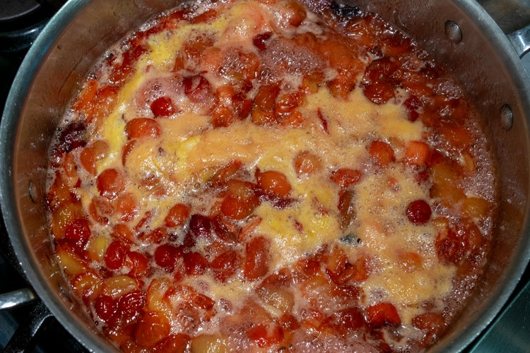Foam forming as plums begin to boil for jam