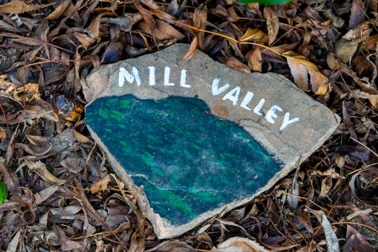Rock painted with Mount Tamalpais